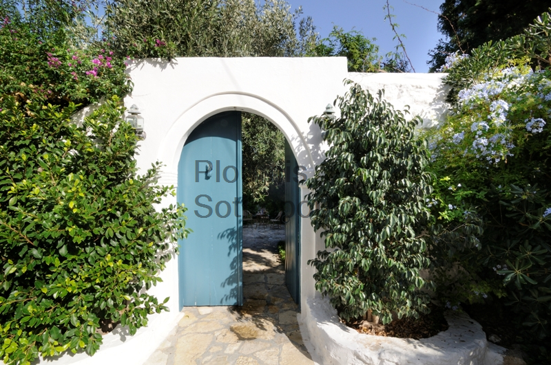 An oasis in the heart of Spetses