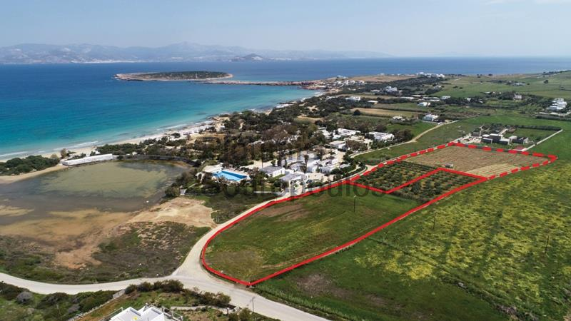 Touristic Development Site facing the Beach of Santa Maria, Paros