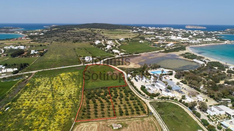 Touristic Development Site facing the Beach of Santa Maria, Paros Greece for Sale