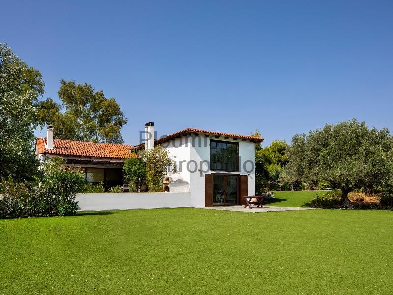 Beachfront Property near Corinth Greece for Sale